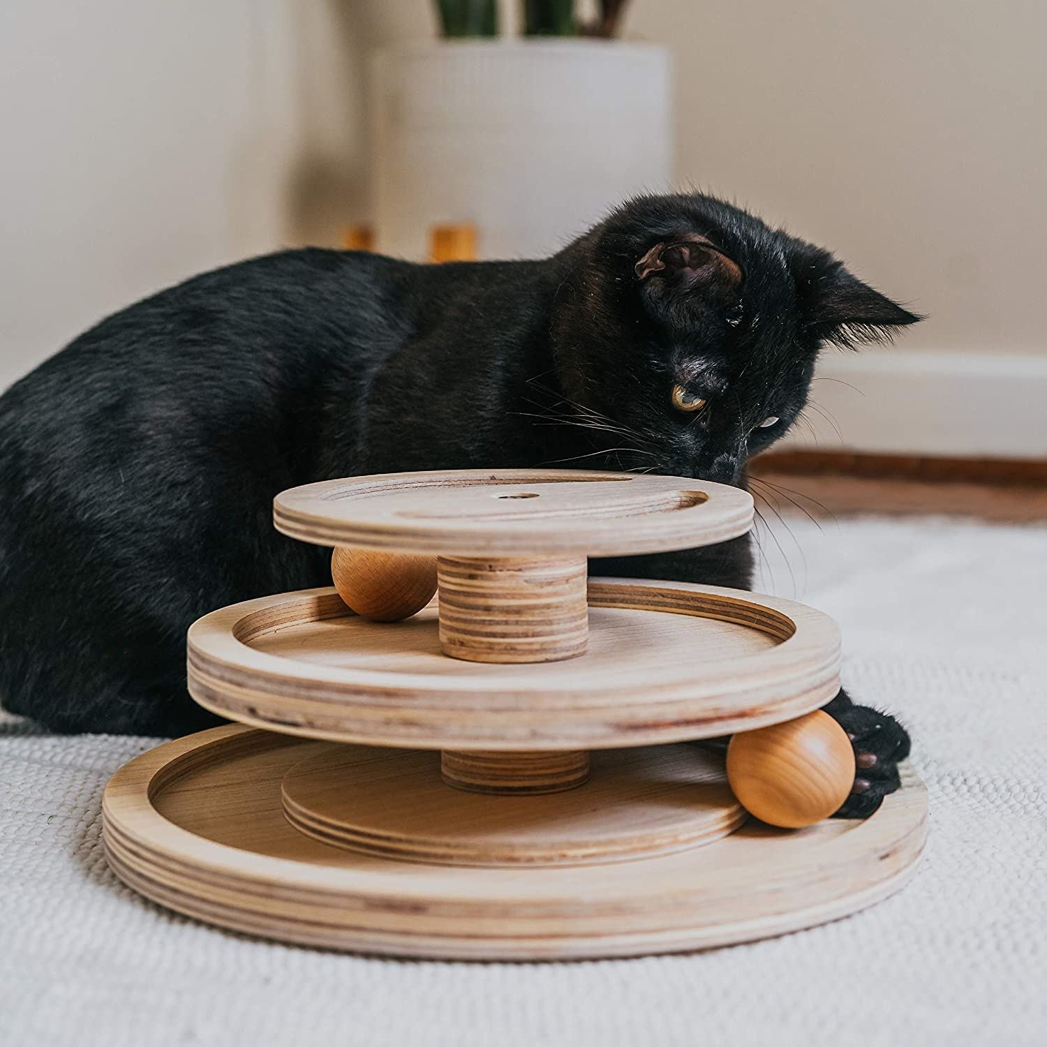 Cat playing with three-tiered ball rolling toy