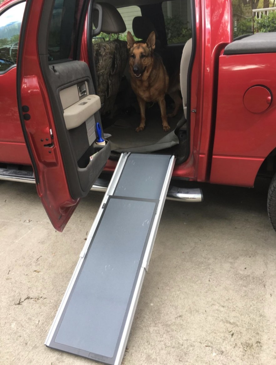 The extendable pet ramp