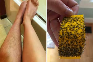 On the left, a leg shaver, and on the right, a houseplant insect trap