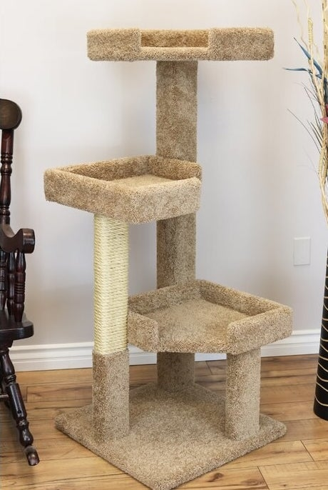 The brown cat tree
