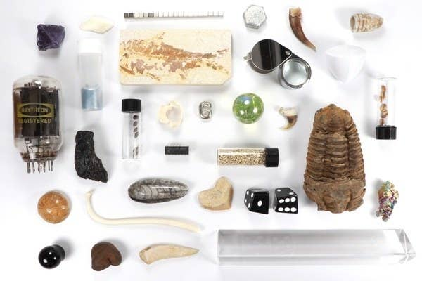 an array of fossils, test tubes, stones, and scientific objects