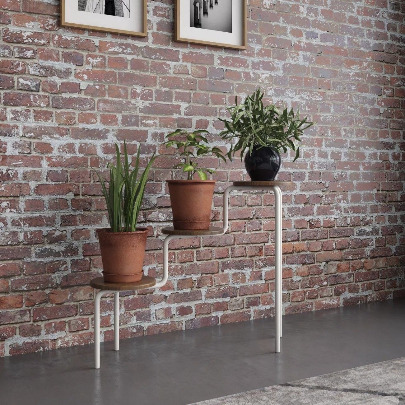The plant stand with three plants on each tier