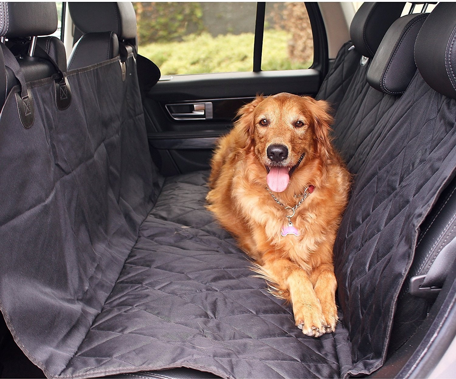 A dog sits on the seat cover