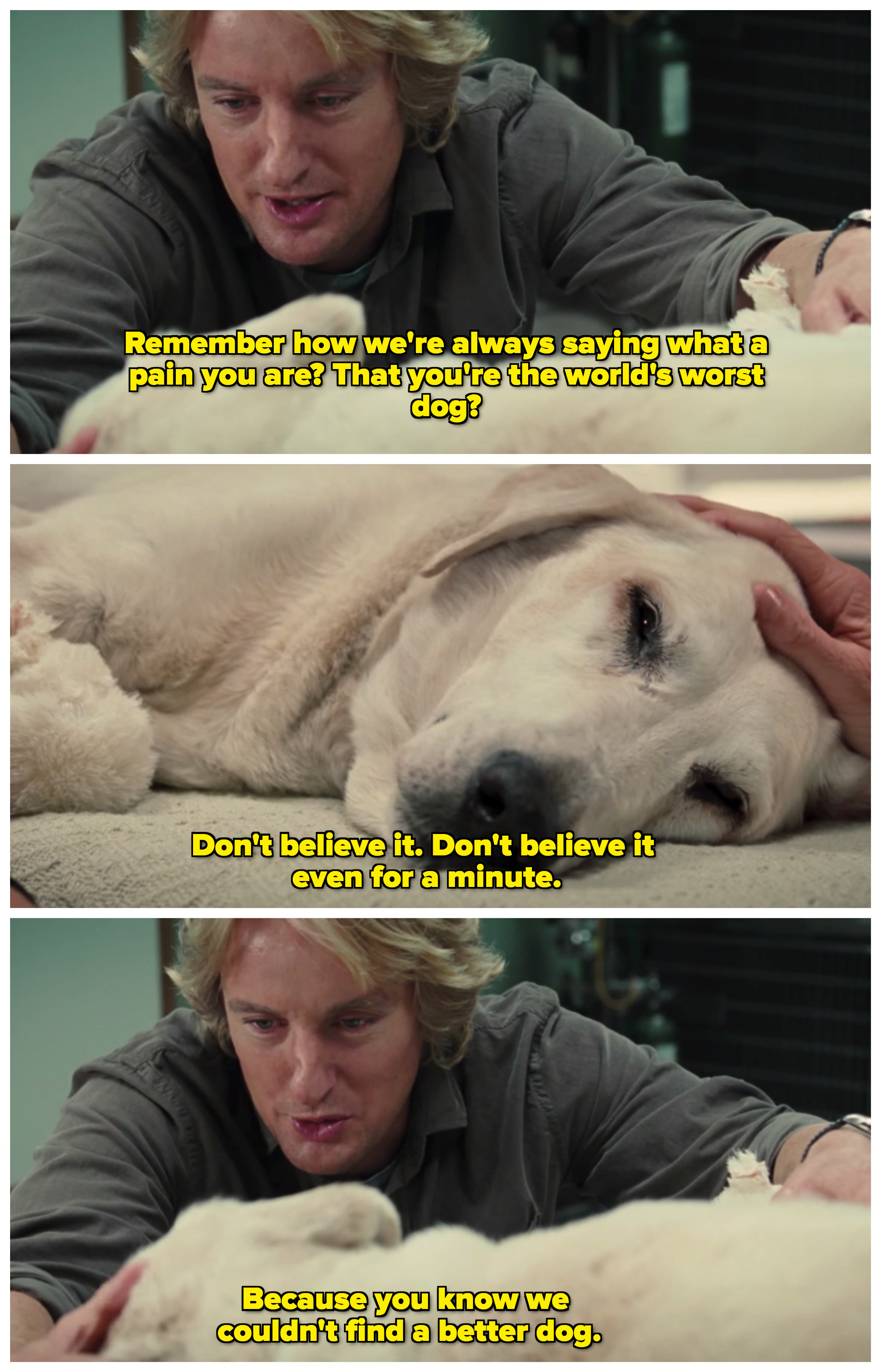 "John patting Marley, who is lying down on blanket in a veterinary examination room; John is telling Marley that even though he said he was a pain, he ""couldn't find a better dog"""
