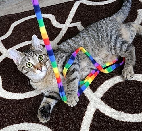 A gray striped cat playing with a fleece rainbow string toy