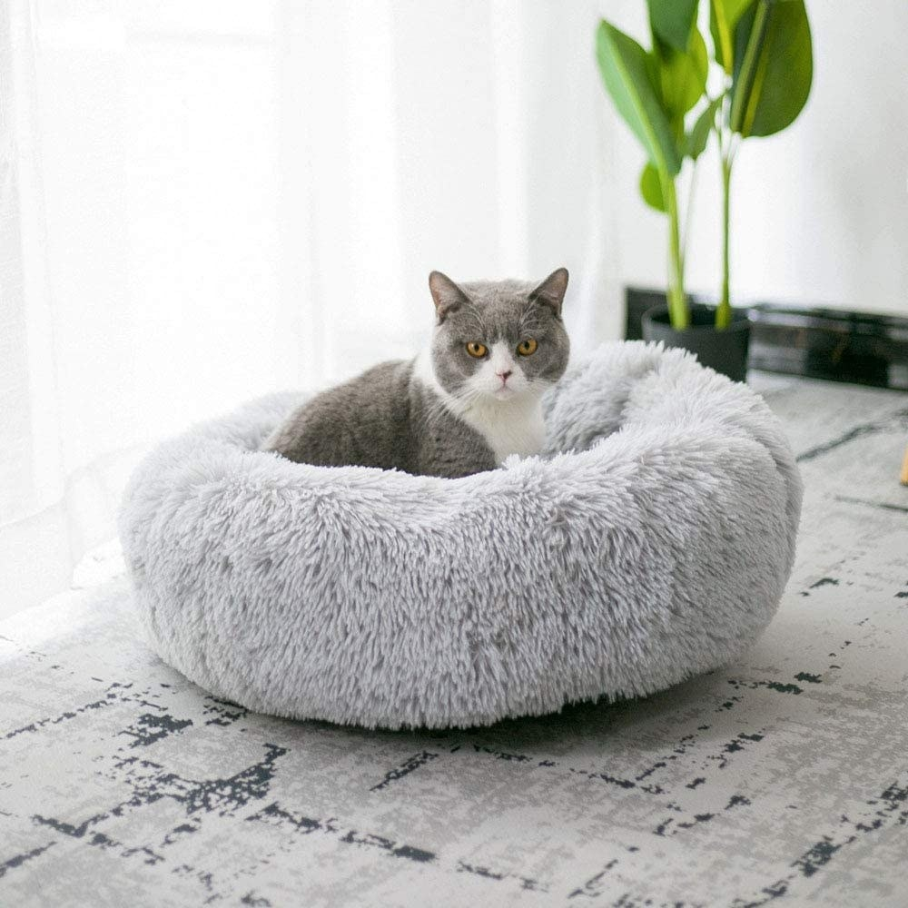 a grey and white cat sitting in a plush and fuzzy light grey cat bed