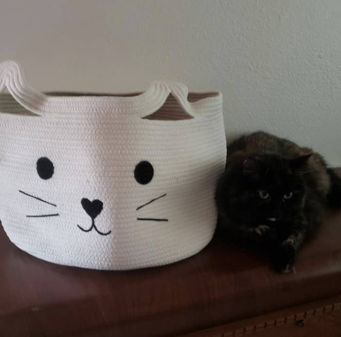 a brown and black cat sitting next to a white woven basket with a cat design stitched on