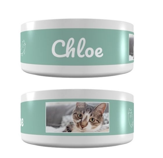 """White and green bowl that says """"Chloe"""" with a cute portrait picture of a kitty"""