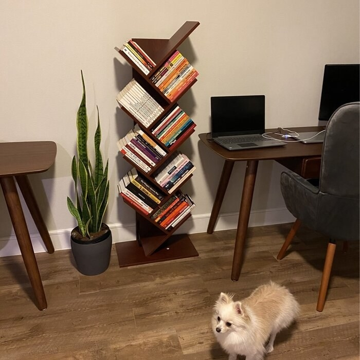 Reviewer's picture of the bookcase tree