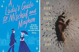 A Lady's Guide to Mischief and Mayhem book cover / At Night All Blood Is Black book cover