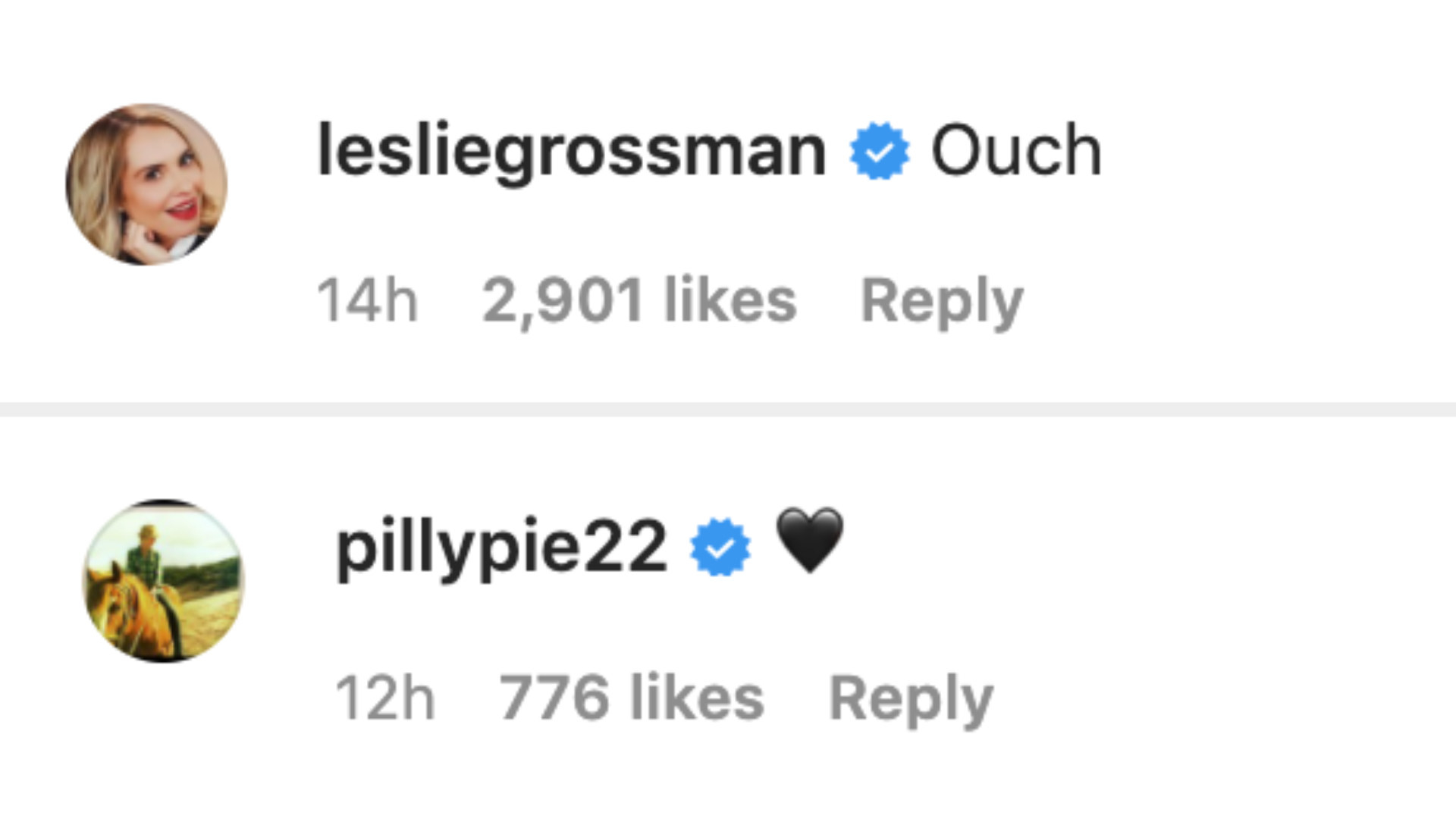 """Leslie Grossman reacted to the poster by saying, """"Ouch"""" while Lily Rabe posted a black heart emoji"""