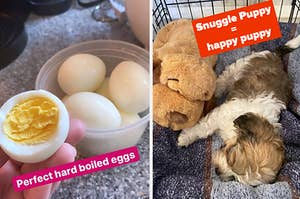 On the left, a rapid egg cooker, and on the right, a Snuggle Puppy