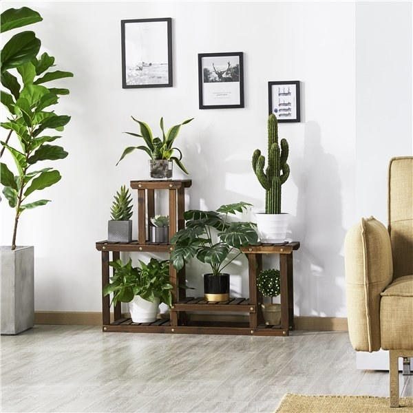 The stand filled with plants in front of a wall