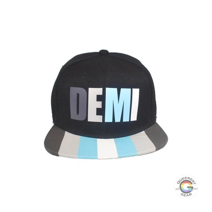 a snapback hat painted with Demi pride colors