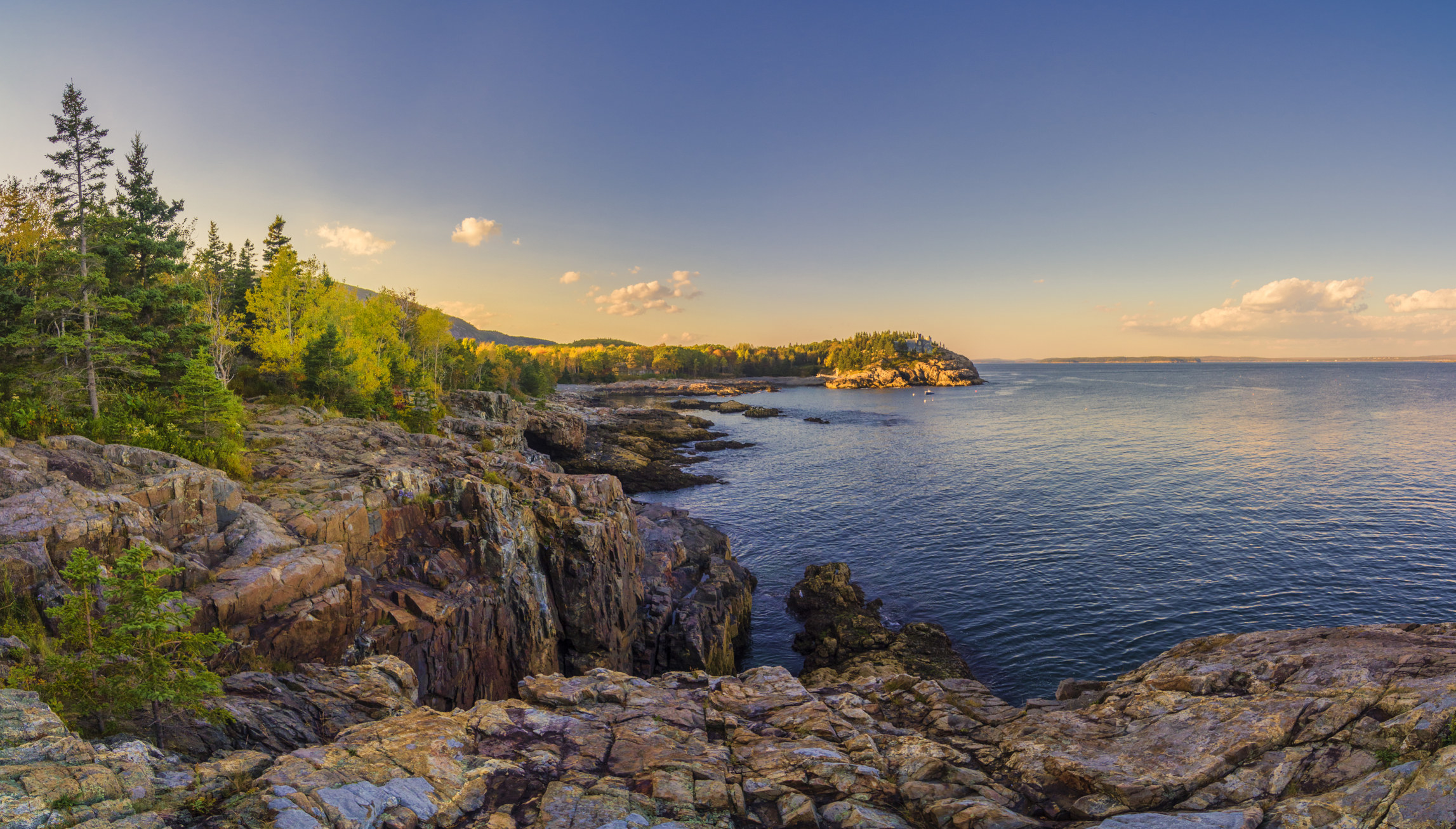 Rocks and trees leading down to the water at Schooner Head