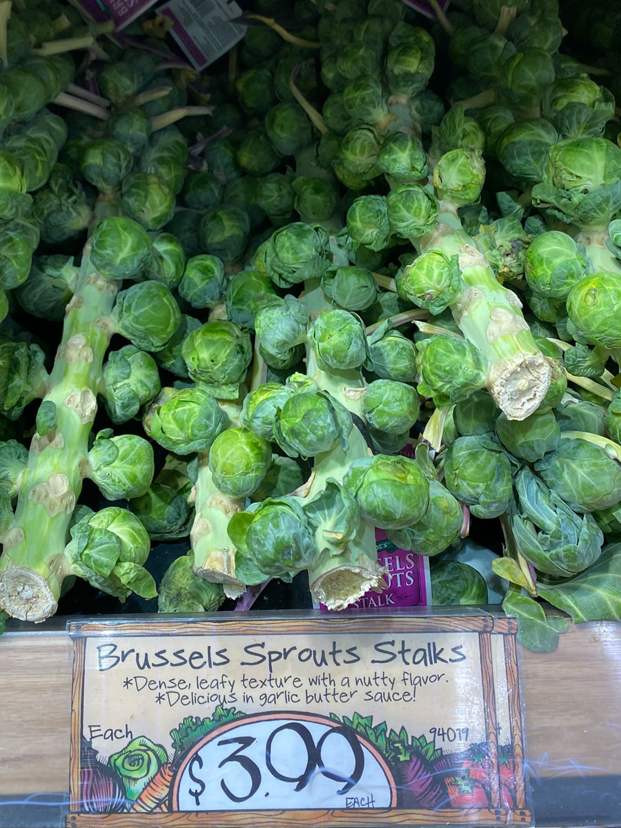 A handful of Brussels sprouts stalks.