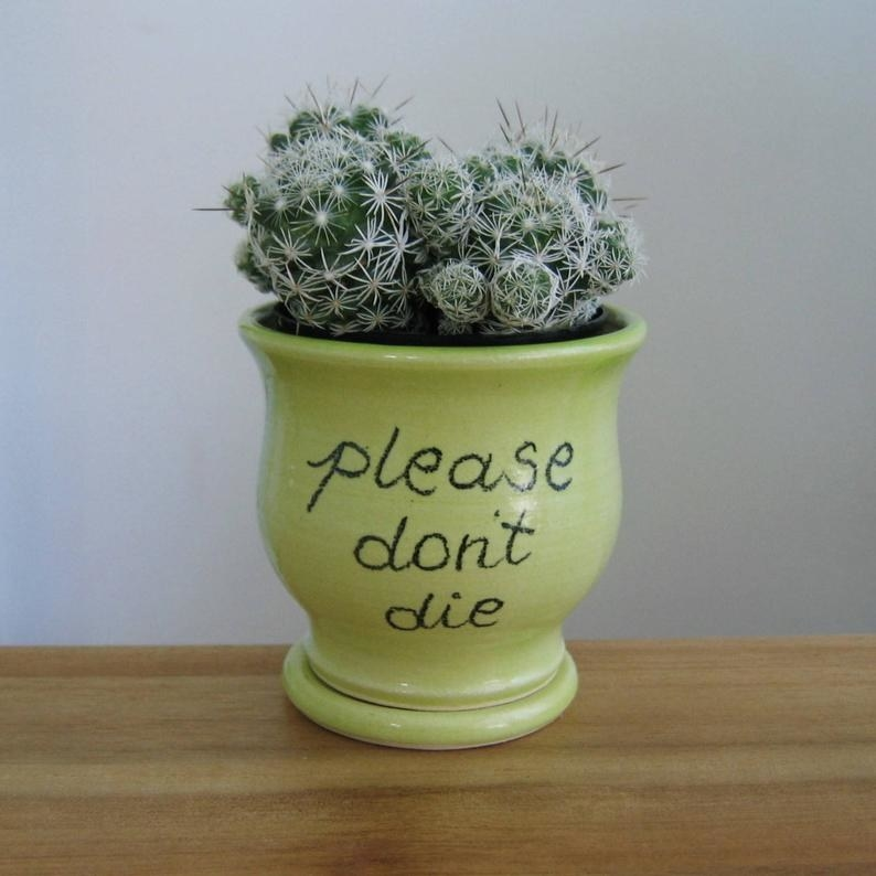 """The green planter that says """"please don't die"""" in cursive lettering, with a cactus inside"""