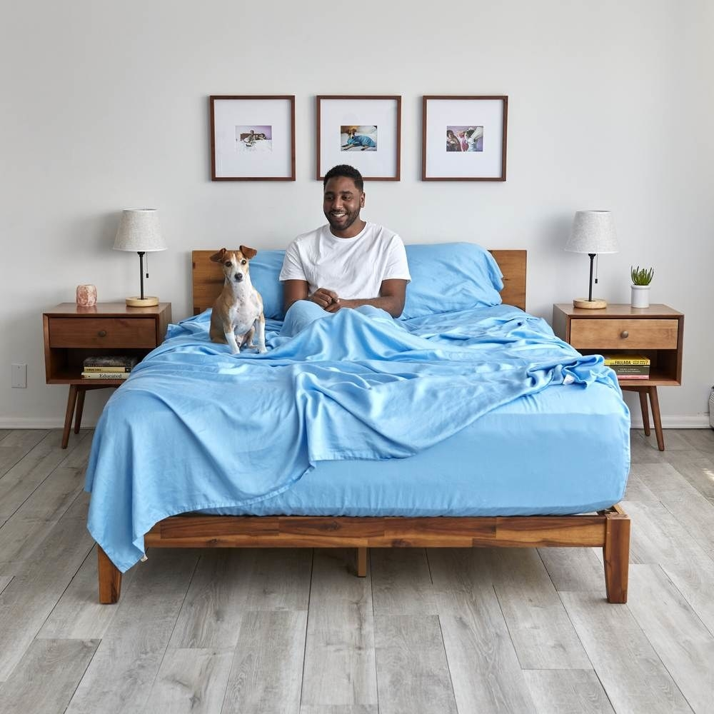 a model and a dog in a bed with the blue sheet set