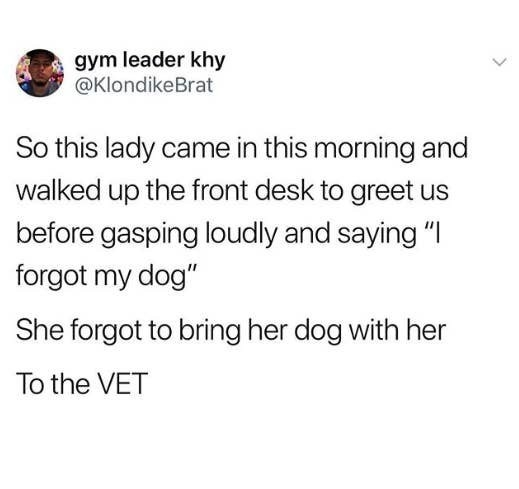 tweet about a lady forgetting to bring her dog to the vet