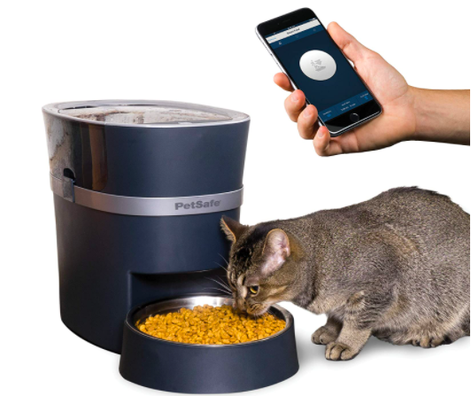 Cat eating food out of dish dispenser alongside owner pulling up app on their phone