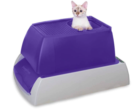 Cat peeking out of top of large litter box