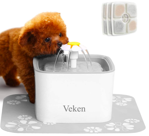 Puppy drinking out of water fountain stream