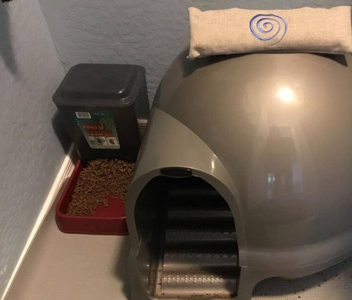 The dome-shaped litter box in silver