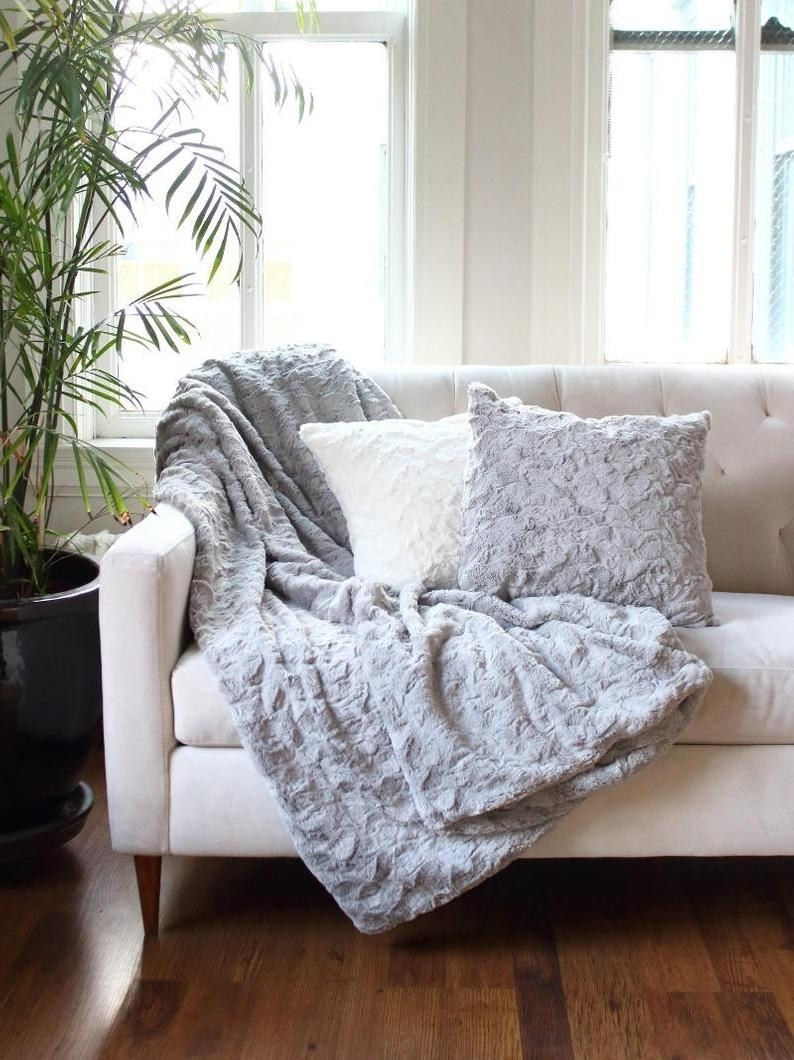 two pillows and a throw on a couch