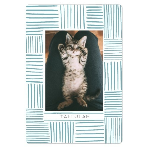 a rectangular magnet with a blue line design around the edges and a photo of a cat in the middle