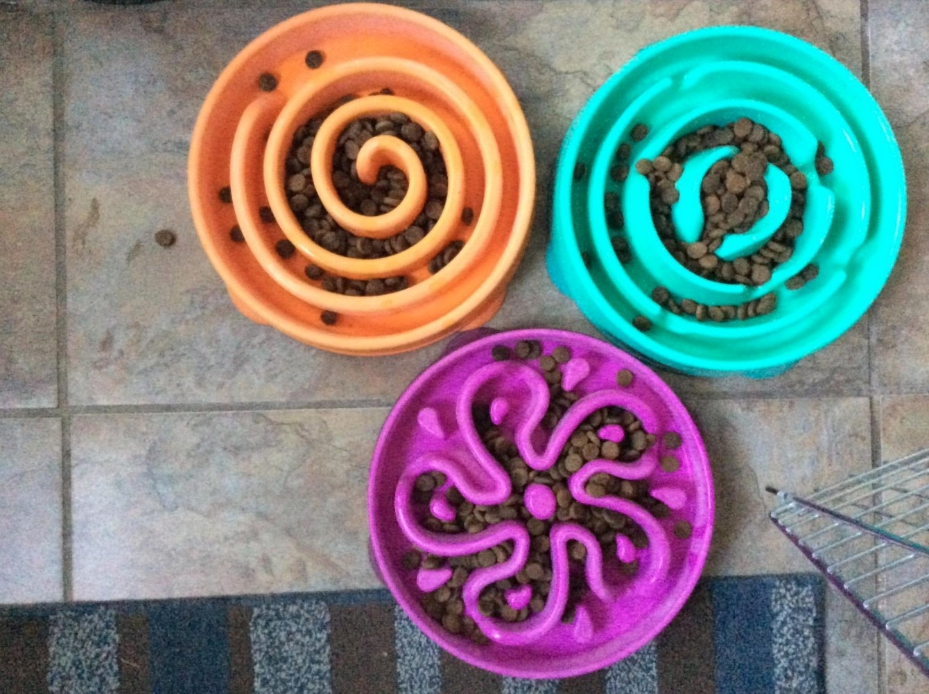 The fun feeder in three different colors