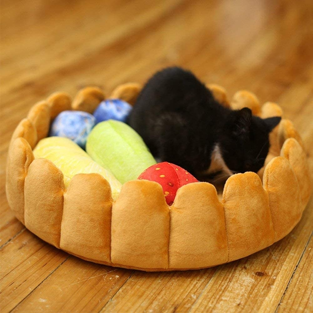 cat in a tart-shaped bed with fruit toys inside of it
