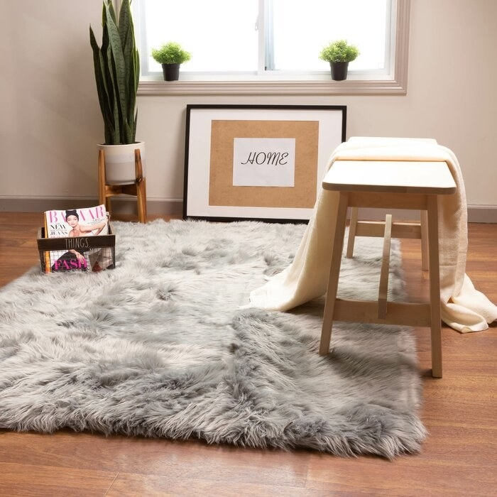 The gray handmade shag area rug staged with a picture frame, plant, and small table