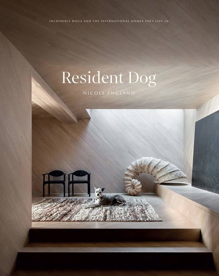 """Resident Dog"" book cover"
