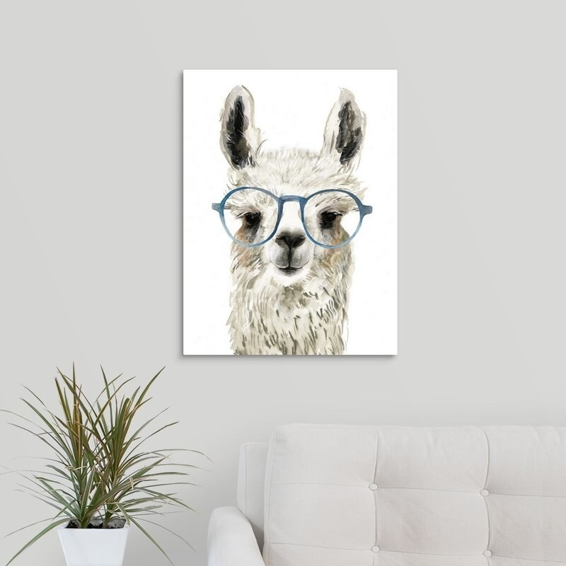 llama with glasses print hung on a wall