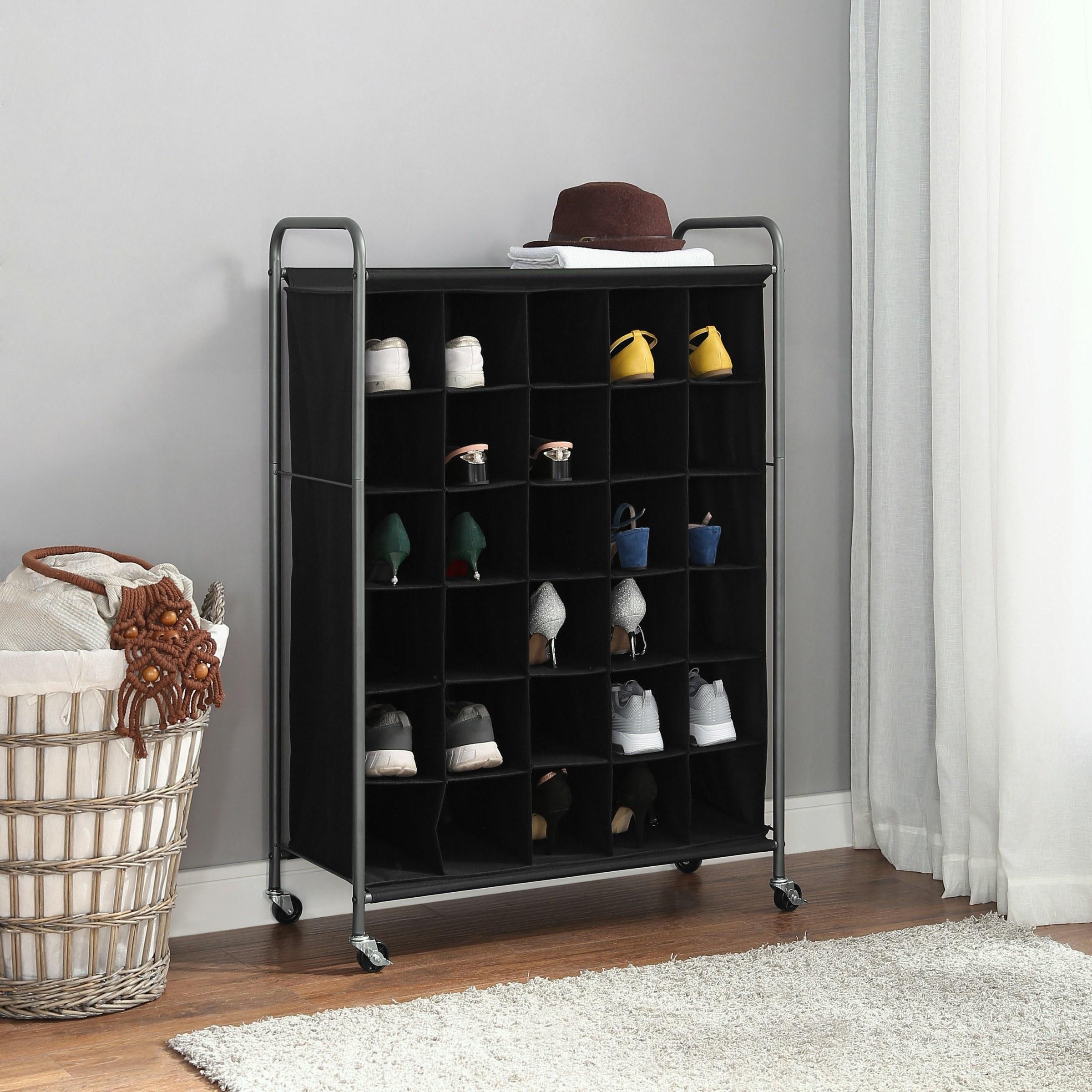 Black shoe organizer with gray railings