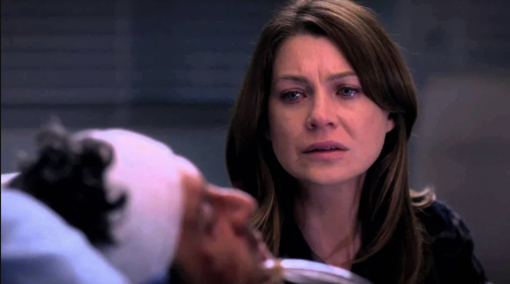 Meredith saying goodbye to Derek before she has them unplug him.
