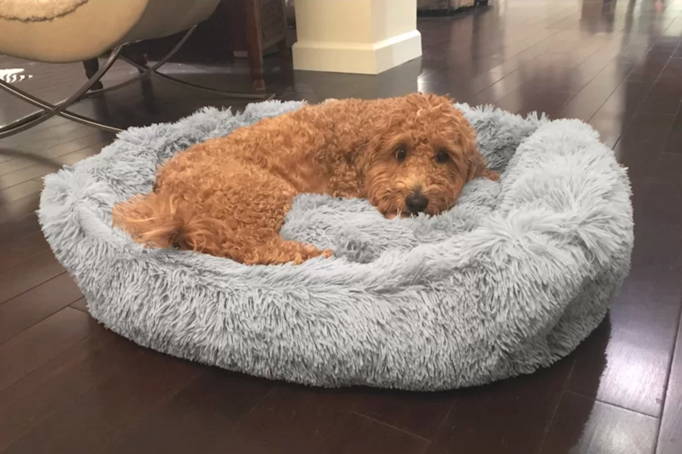 The donut bed in gray