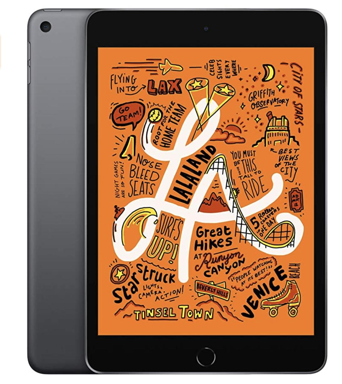 Apple iPad Mini in the color space gray