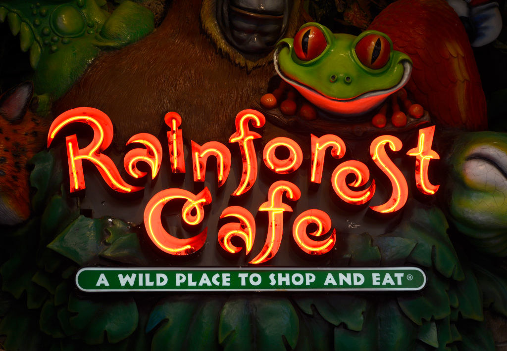 A close-up of the Rainforest Cafe sign with a frog statue above it.