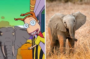 eliza thornberry and an elephant