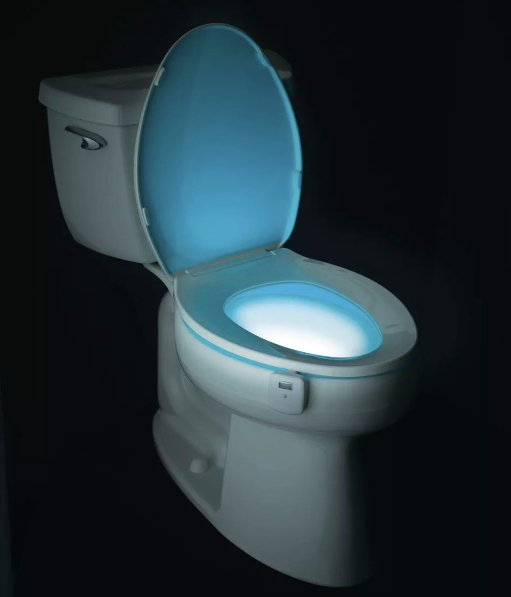 The light in a toilet bowl