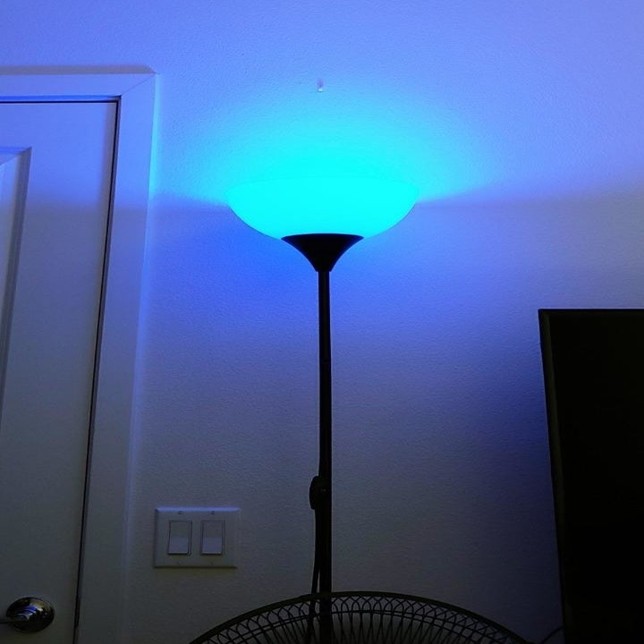 Reviewer photo showing lamp with blue light