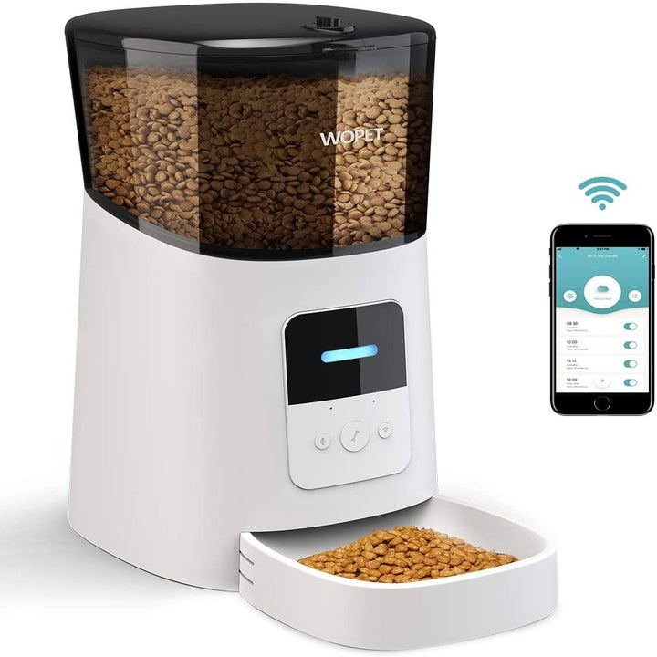 Product shot of automatic pet feeder next to smart phone