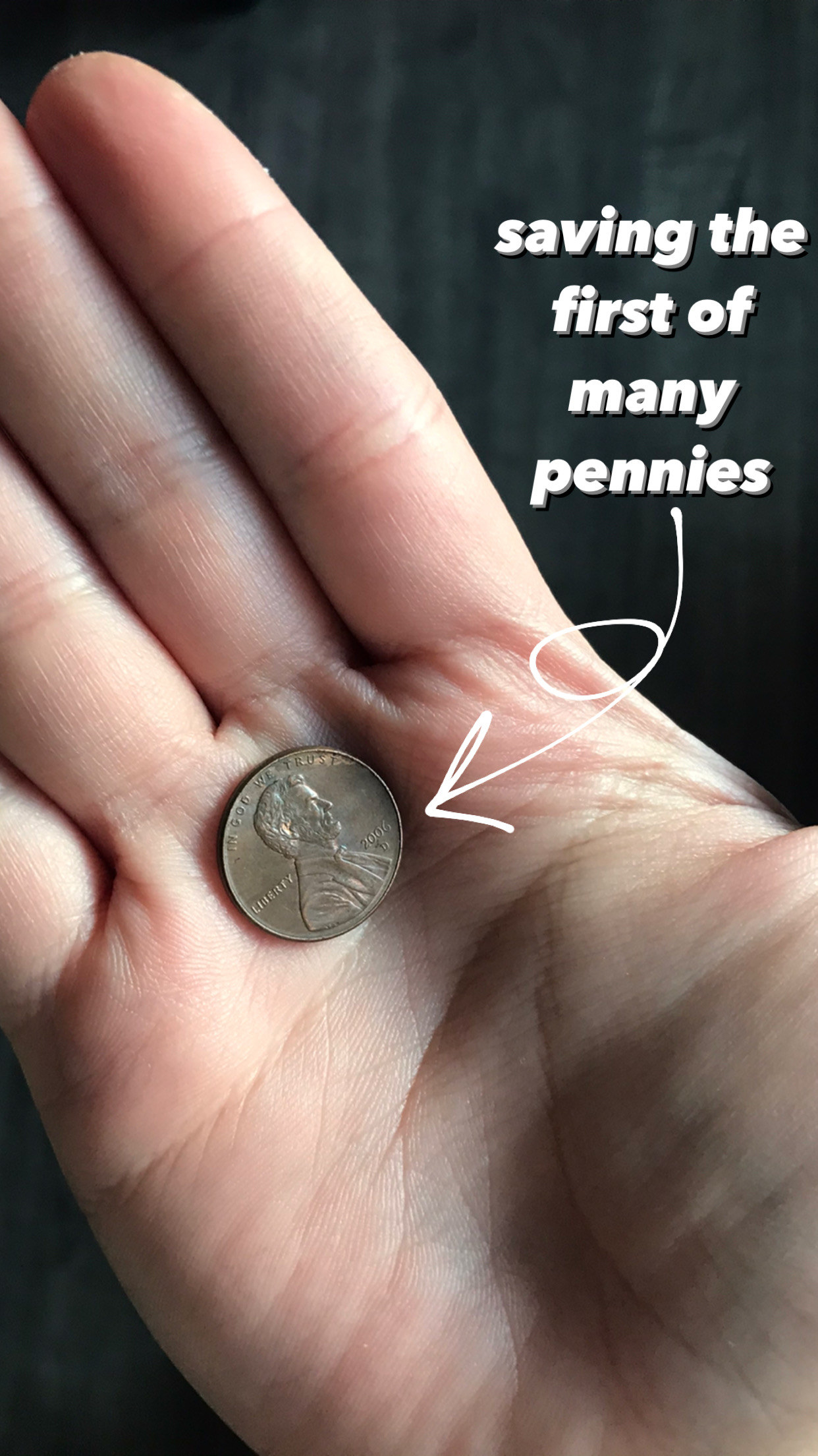 "A close up of a palm with a penny in it and an arrow points to text ""saving the first of many pennies"""