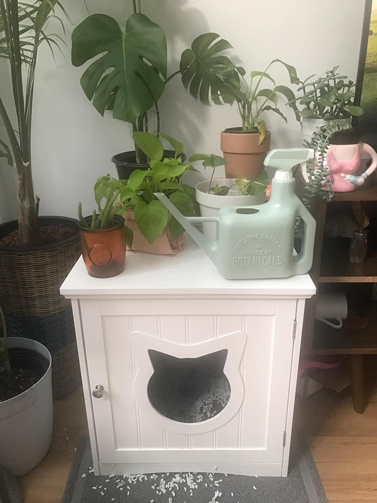 reviewer image of the cat house side table in a corner of a living room, housing plants on its surface