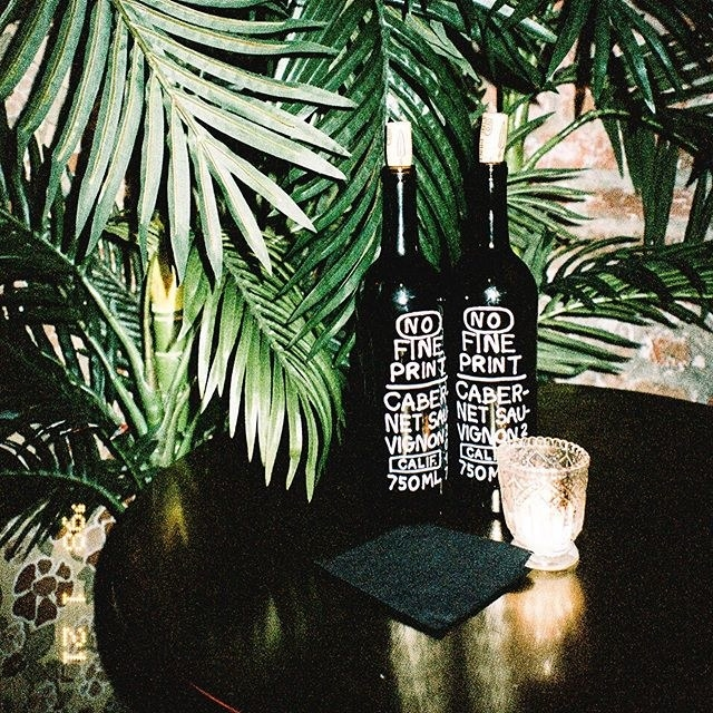 Two corked bottles of wine photographed in a dimly lit room underneath a large green plant