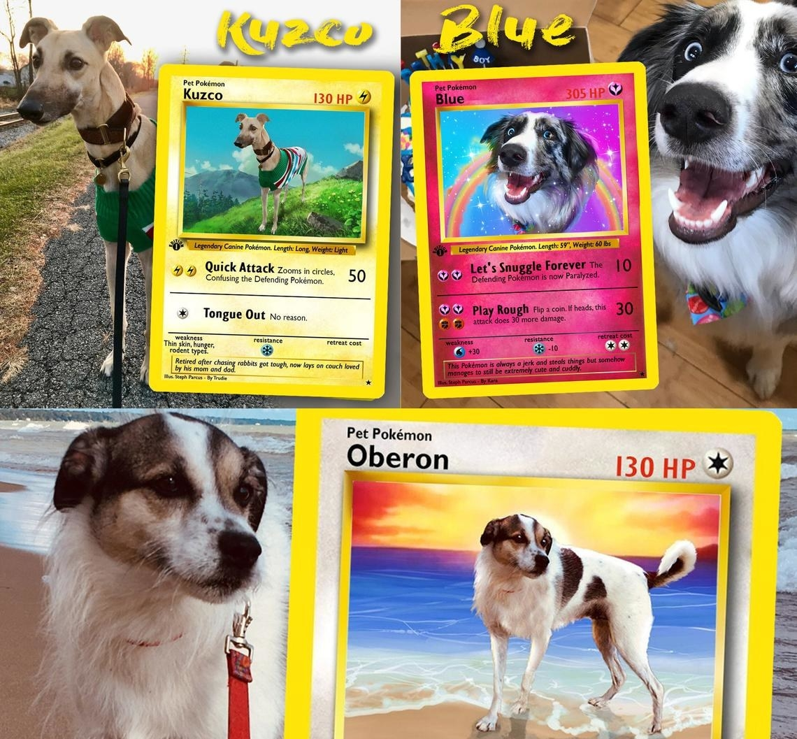 dogs on pokemon cards