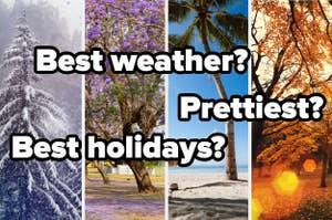 Which season is prettier? Best weather? Best holidays?