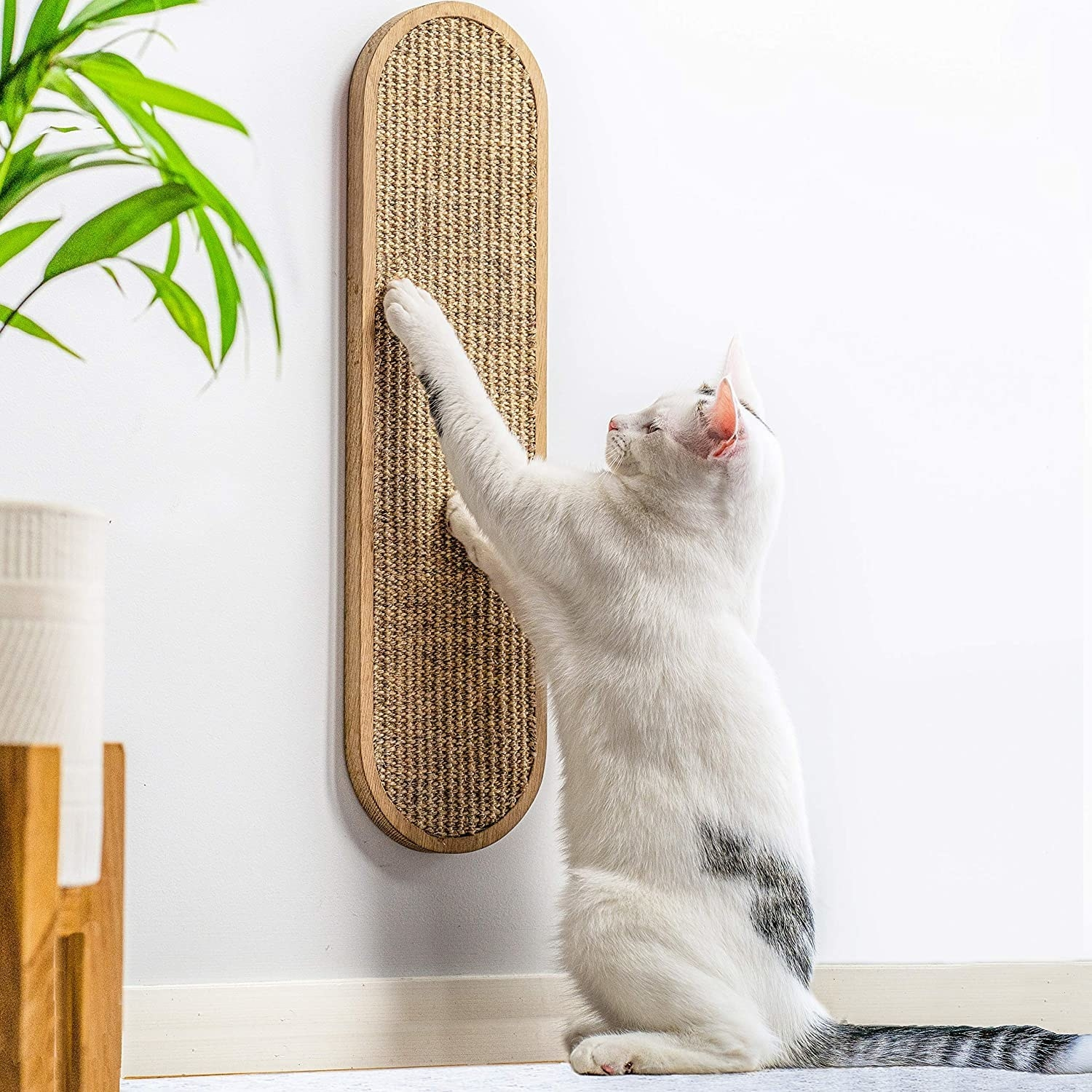 white cat with a grey spot on its back scratching an oval shaped scratch pad that is mounted to a wall