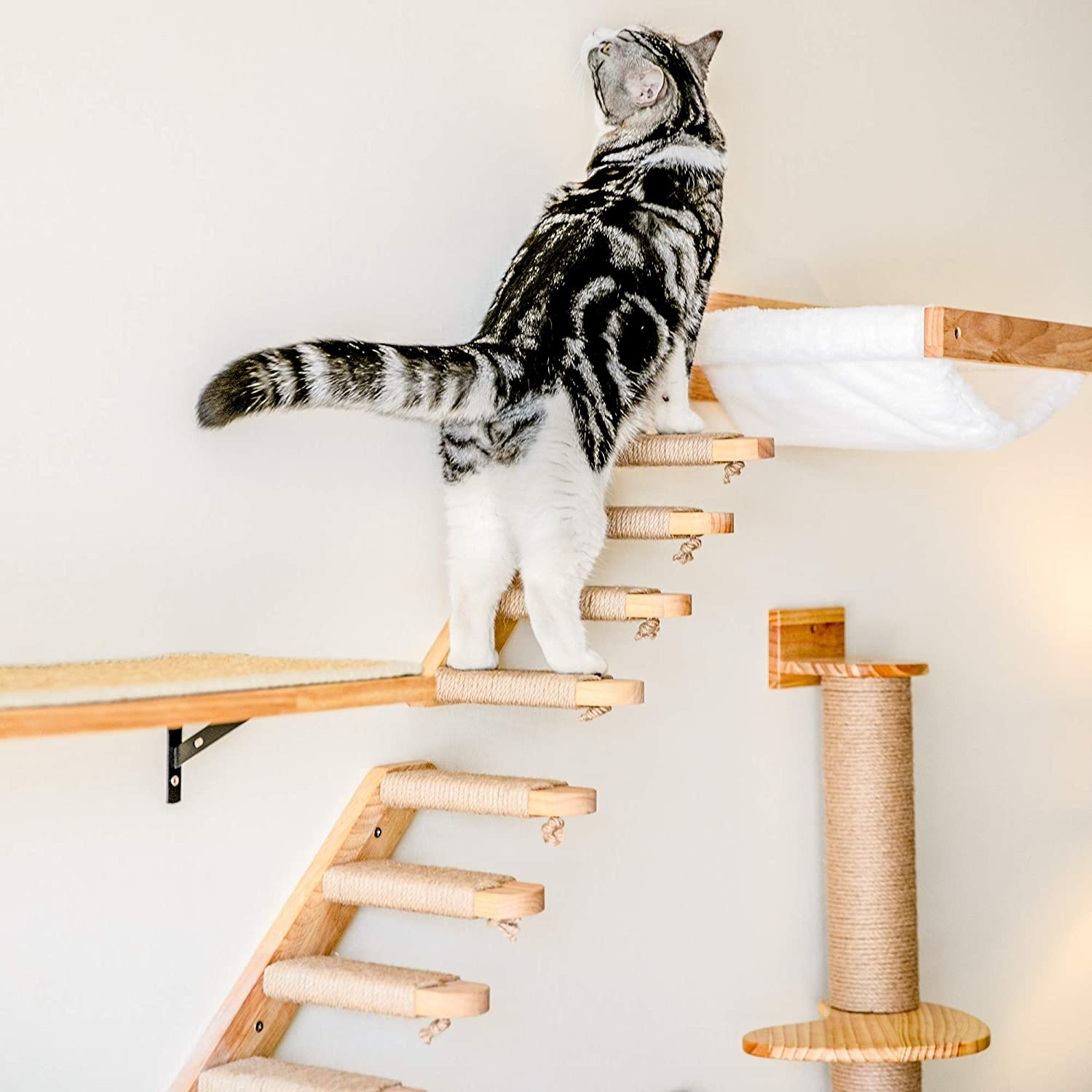 a black and grey striped cat climbing on a wall-mounted set of stairs that has four steps and a scratch pad on each step